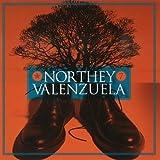 Songtexte von Craig Northey - Northey Valenzuela