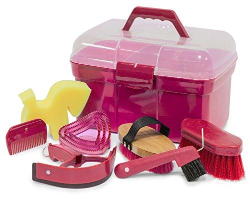Inkognito Box intonaco cassetta imbottito con accessori per cavalli | intonaco cassetta | valigetta