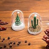 Salzstreuer Weihnachtsbaum und Pfefferstreuer Kaktus