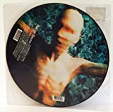 MARILYN MANSON disposable teens, picture disc, 497 458 1