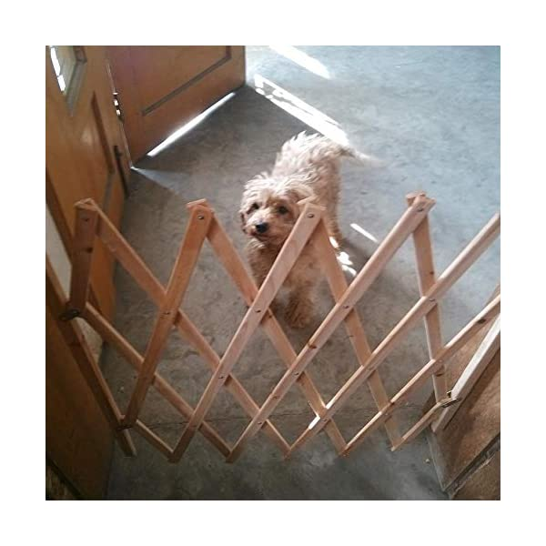 Pet Expanding Wooden Fence Gate,Retractable Dog Screen Sliding Door Gates Doorways Freestanding Portable Dog Cat Gate Safety for Home Patio Garden Lawn cheerfulus-123 Pet Wooden Door Fence: The wooden fence gate allows pets to stay away from dangerous areas while providing a safe fence for play and rest Retractable Dog Gate: The length is about 60-110cm,the distance that can be stretched when used,can be shrunk when not in use Easy Installation: The wood pet fence has two screws fixed on one side, and the other side is designed as a buckle for easy access 3