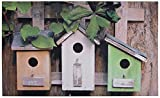 Best Home Collection Bird Houses - Fallen Fruits RB88 Bird Houses Printed Doormat Review