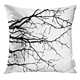 Throw Pillow Cover Dry Tree Dead with Beautiful Branch Silhouette Suitable As Reference for And Work Close Up Details Decorative Pillow Case Home Decor Square 18x18 Inches Pillowcase