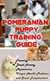 Pomeranian Puppy Training Guide: Training, Breed History, Appearance, Unique Health Problems, and Social Temperament