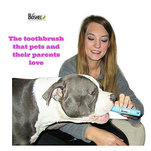 Hund Zahnbürste für Pet Zahnpflege von boshelâ ®–Triple Zahnbürste–empfohlen von Tierärzte Leitung und PET hundefriseuren–Perfekt für große Hunde–ergonomischer Griff Design für einfache Oral Care Pflege - 4