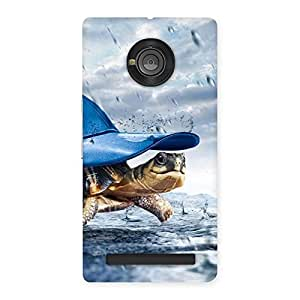 Wow Turtle Multicolor Back Case Cover for Yu Yuphoria