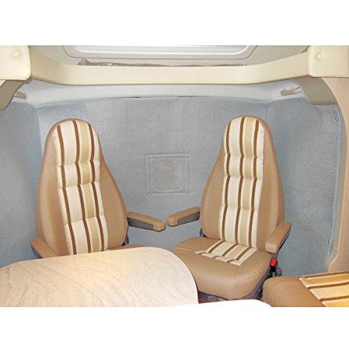 Preisvergleich Produktbild Hindermann Thermovorhang für Fiat Ducato ab Baujahr 07 / 2006 hellgrau