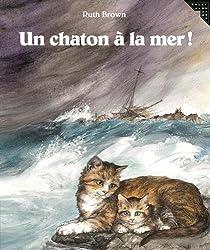 Un chaton à la mer!