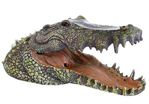 Testa di coccodrillo - Arredo mobile per
