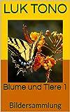 Blume und Tiere 1: Bildersammlung (German Edition)
