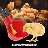 10Pcs Distributori automatici di polli abbeveratoi pollame abbeveratoi Tazze Ciotole Distributore bevande Red Cortili plastica Stormo di anatre Uccello Alimentatore d'acqua per piccioni Quaglia