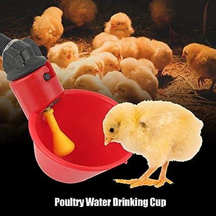 10Pz Abbeveratoio per Galline, Bevitori automatici pollo Ciotole per innaffiare pollame Dispenser plastica Mangiatoia per Galline per pollo Stormo anatra Uccello Piccioni Gallina quaglia