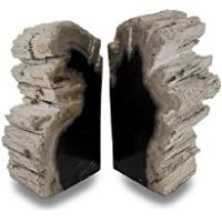Things2Die4 indonesischem Dunkles versteinertes Holz Buchstützen 6–8Pfund preisvergleich bei billige-tabletten.eu