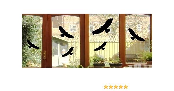 40x17cm 6 Autocollants oiseaux-oiseaux greifvogel wTD film adh/ésif pour fen/êtres en verre de diff/érentes tailles b368 30x12cm 24cmx10cm noir 2x ca 1x ca Plastique 3x ca