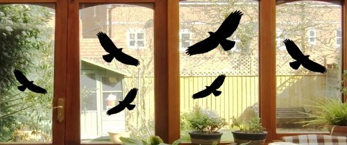 6 Vogel Aufkleber - Vögel Fenster Glas Greifvogel Fensterbild - verschiedene Größen B368 (schwarz)