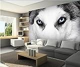 Malilove Habitación 3D Personalizado De La Imagen De Papel Tapiz De Pared 3D Pegatina Del Perro Ojos Pintura Foto 3D Murales Papel Tapiz200X140CM