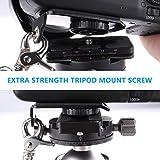 PROWITHLIN Kamera Gurt - Schultergurt mit Sicherheits Tether Montageplatte für Kamera DSLR SLR (Canon Nikon Sony Olympus Pentax, etc.) Test