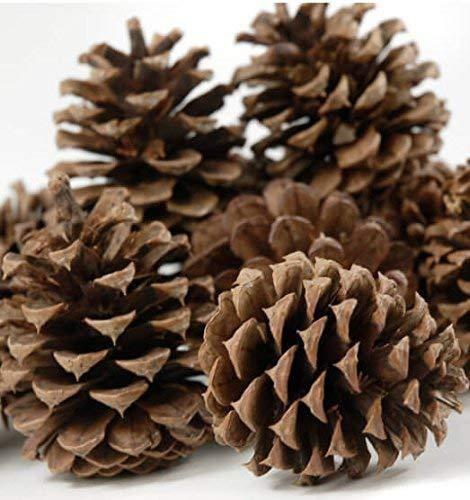 Deanyi Ornamento de la Navidad de la Novedad 1kg Natural de Pino...