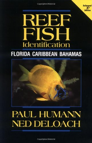 REEF FISH IDENTIFICATION 3RD EDITION: Florida, Caribbean, Bahamas (Reef Set (New World)) by NED DELOACH (31-Mar-2008) Paperback