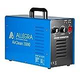 Allegra Ozongenerator Ozonisator Ozon Luftreiniger Air Clean 3000