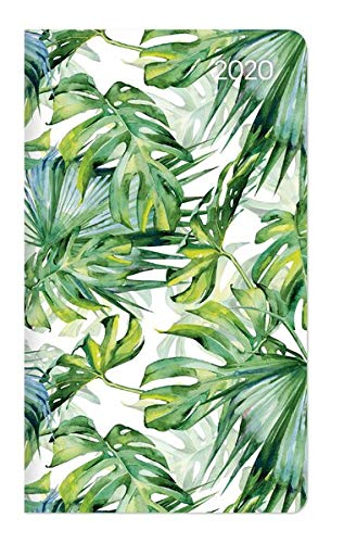 Slimtimer Dschungel 2020 - Taschenplaner - Taschenkalender (9 x 16) - Weekly - 128 Seiten -...