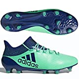 adidas Unisex-Erwachsene X 17.1 FG CP9163 Fußballschuhe, Weiß (Footwear White/Energy Blue/Clear Grey), 41 1/3 EU