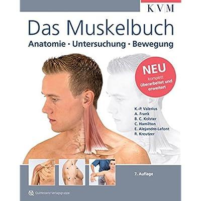 PDF] Das Muskelbuch: Anatomie - Untersuchung - Bewegung KOSTENLOS ...