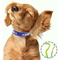 Para mascotas perros y gatos pulgas y garrapatas Collar con Esencia botánico natural para el Control