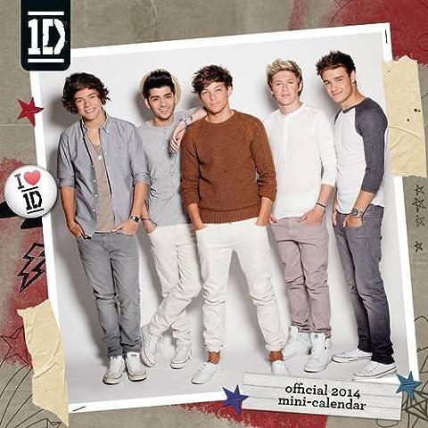 Official One Direction 2014 Mini Calendar (Mini Calendars 2014)