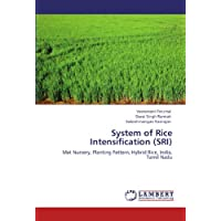 System of Rice Intensification (SRI): Mat Nursery, Planting Pattern, Hybrid Rice, India, Tamil Nadu