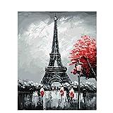 Shukqueen DIY Erwachsenen Öl-Gemälde, Malen nach Zahlen Kits, Acryl-Malerei Schwarz, Weiß, Eiffelturm, 16x 20cm, Framed Canvas