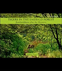 Tigers in the Emerald Forest Ranthambhore After the Monsoon