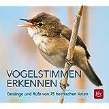 Vogelstimmen erkennen / CD: Gesänge und Rufe von 75 heimischen Arten