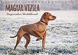 Magyar Vizsla - Ungarischer Vorstehhund (Tischkalender 2020 DIN A5 quer): Mit dem ungarischen Vorstehhund durch das Jahr (Monatskalender, 14 Seiten ) (CALVENDO Tiere)