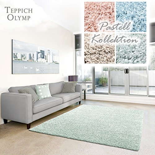 Shaggy de alfombra Shaggy Pastel   mullido–Alfombras para salón, comedor, Dormitorio o habitación, Monótono, sin sustancias nocivas (Mint–40x 60cm), verde menta, 40 x 60 cm