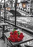 TianMai Heiß Neu DIY 5D Diamant Malerei Kit Kristalle Diamant Stickerei Strass Malerei Kleben Malen nach Zahlen Stich Kunst Kit Zuhause Dekor Mauer Aufkleber - Grau Paris Red Rose, 30x40cm