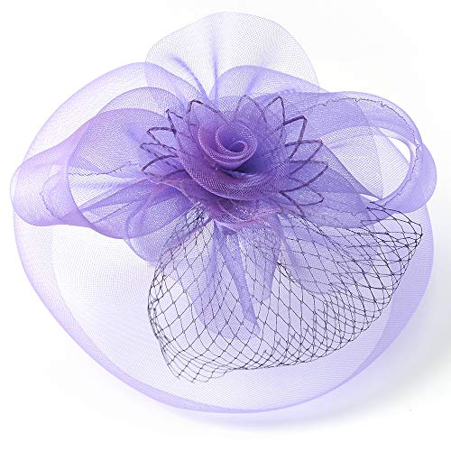 Women Fascinator Hat Feather Headwear Net Mesh Veil Clip und Hairband Kentucky Derby Tea Party Wedding Hat mit Hair,Purple
