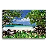 Calvendo Lienzo Premium 75 cm x 50 cm Horizontal, Color Turquesa mar y jugoso Verde mangrovas en la Costa de Yucatan Imagen sobre Bastidor Golfo de México, México
