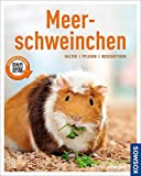 Meerschweinchen: halten, pflegen, beschäftigen (Mein Tier)