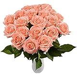 XUE SHI 10 piezas Real Touch artificiales de seda rosa flores para boda fiesta Hotel cumpleaños Decoración Jardín Ramo de novia de San Valentín Day Gifts (Champagne)