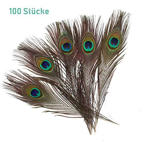 ZesNice 100 Stück Pfauenfedern Schöne Natürliche Federn, 25-30 cm, Handwerk Dekoration für Karnevalskostüm Augen Kunst Kleid Hüte Hochzeit Party (Natürliche Pfauenfedern 30)