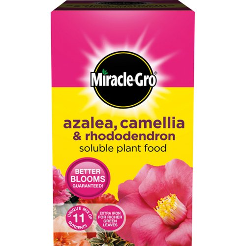 miracle-gro-azalea-camellia-rhododendron-soluble-plant-food-500g