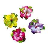 Haar Clips Hibiskus Hawaii Haarschmuck Damen Karibik Hibiskusblüte Kostüm Zubehör Schmuck Blumenschmuck