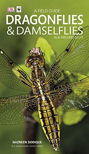 Dragonflies & Damselflies in & Around Delhi: A Field Guide