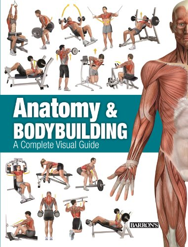 Anatomy & Bodybuilding: A Complete Visual Guide
