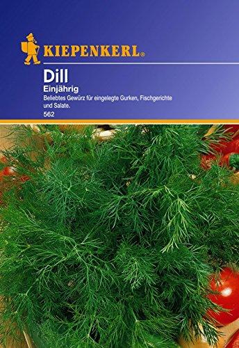 Dominik Blumen und Pflanzen, 910119 Kiepenkerl Dill Einjährig
