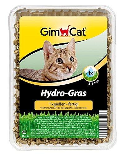 GimCat Hydro-Gras | Katzengras aus kontrolliertem Feldanbau | dank Hydro-Körnchen nur 1 Mal gießen | 1 Schale (1 x 150 g)