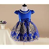 FXFAN Vestidos para Niñas Vestidos para Niños de Verano Faldas de Vestir Doradas Red BlueZHANGM (Color : Azul, Tamaño : 110)