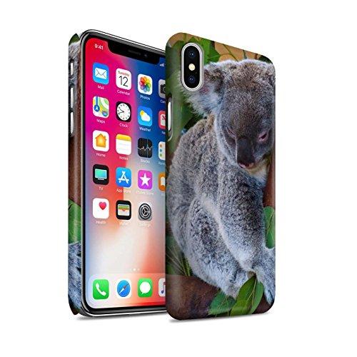 Clipser Matte Coque de Stuff4 / Coque pour Apple iPhone 7 Plus / Girafe Design / Animaux sauvages Collection Koala