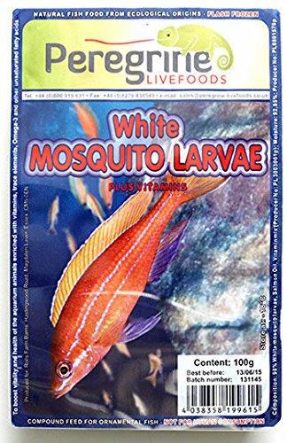 peregrine-blister-pack-white-mosquito-larva
